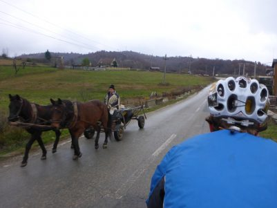 Plenty of horse and carts to race